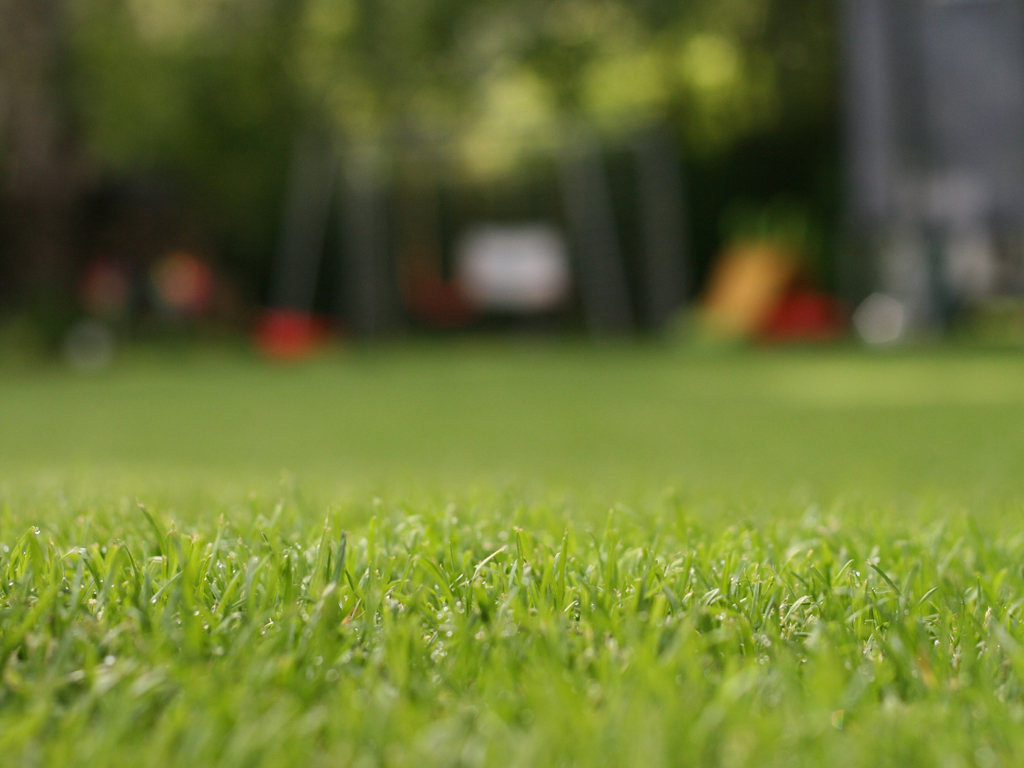 Rasenblogger - Alles über Rasen Im Garten, Rasenpflege ... Garten Anleitung Gartenpflege